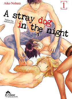 straydoginthenight1